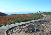 dunespark2.jpg