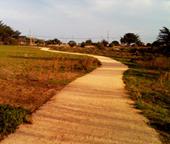 library_path.jpg